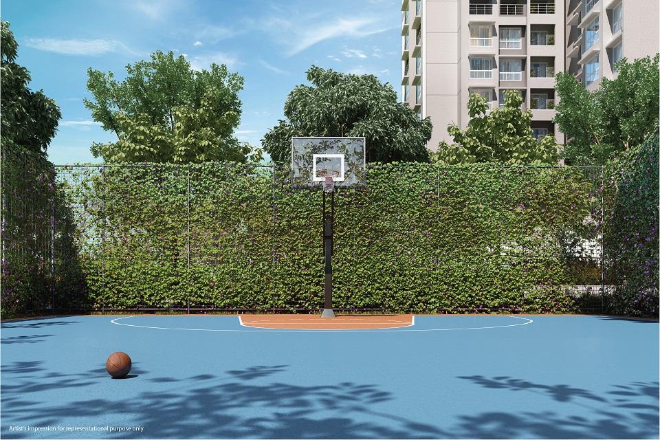 Half Basketball Court - Emerald Isle Amenities